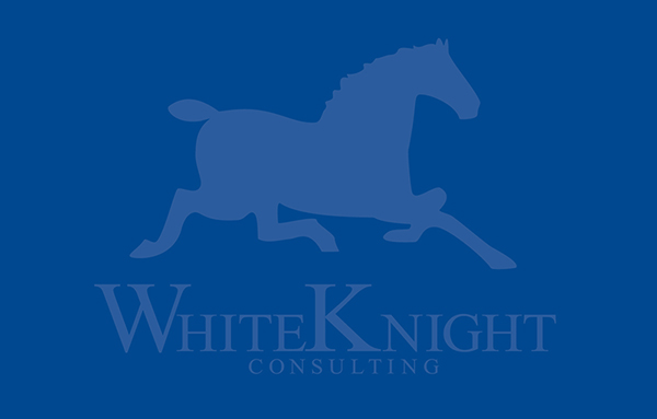 White Knight Consulting
